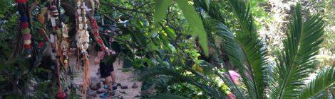 Taller de Chamanismo los Jardines del IPTB